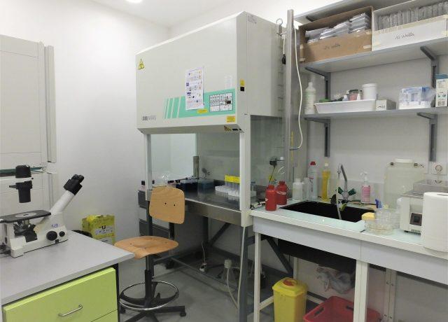 Cell-Culture-Laboratory